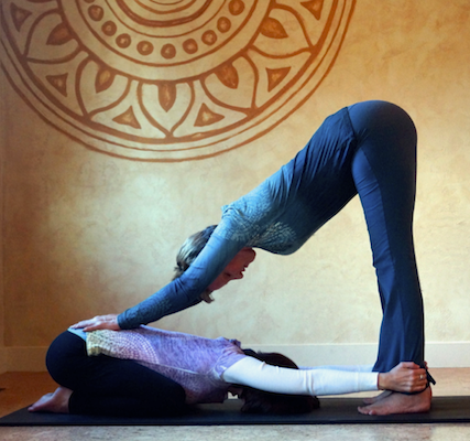 online-yoga-teacher-training-hands-on-adjustments